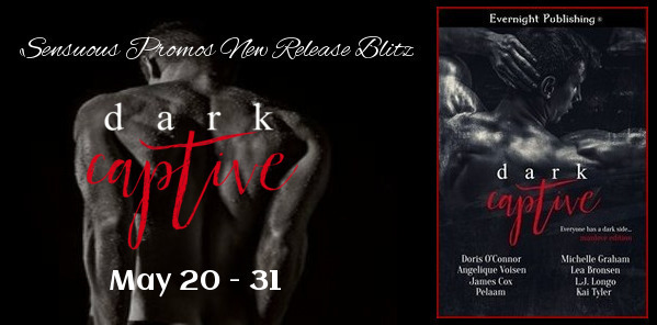 Evernight Publishing Dark Captive 2