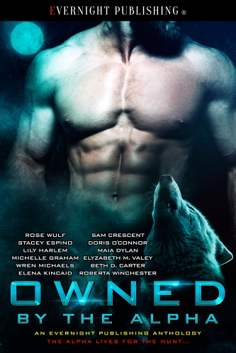 Owned-by-the-Alpha-Antho1-EvernightPublishing2017-MF-eBook-complete